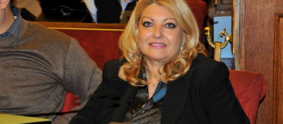 Il presidente della commissione Elisa Marino